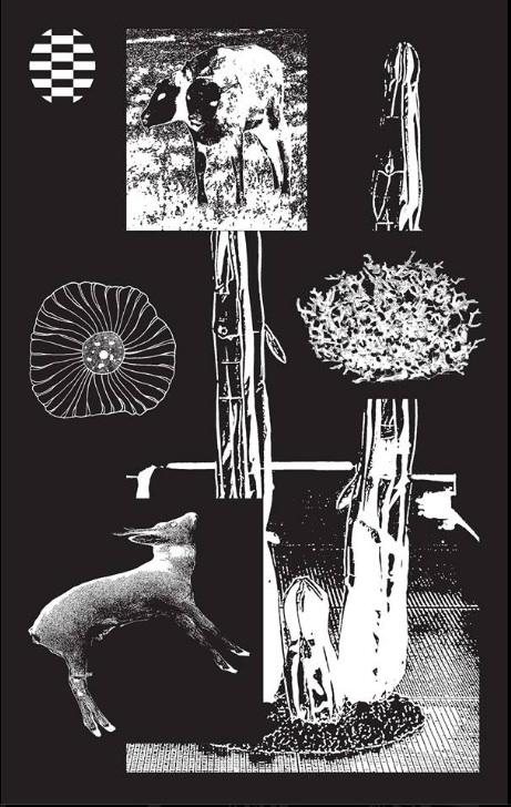 INITIATION A L'ART CONTEMPORAIN / CE MERCREDI 1 Février 2017