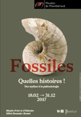 Fossiles. Quelles histoires ! – Musées de Montbéliard