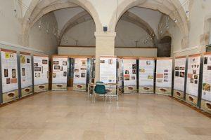Des ressources sur l'exposition «Aux origines de l'art dans le Jura. Il y a 32 000 ans la grotte des Gorges à Amange.»