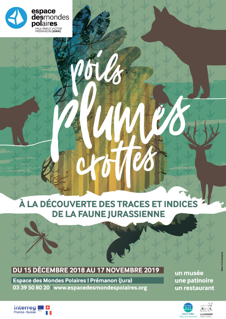 """Espace des mondes polaires – Nouvelle exposition """"Poils, plumes, crottes"""" – dès le 15 décembre"""