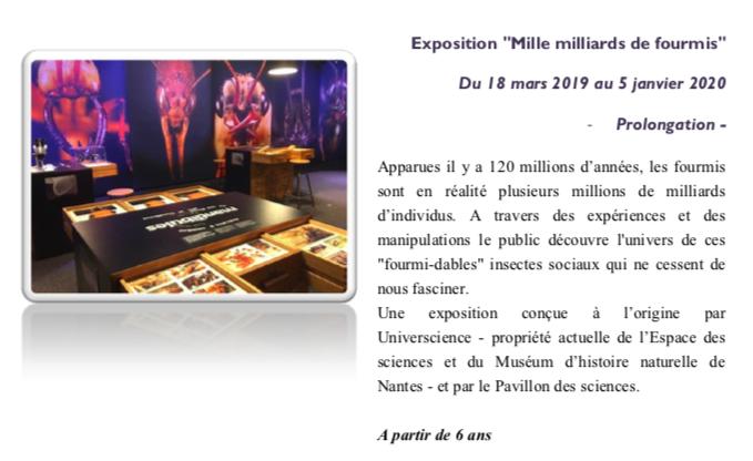 """Pavillon des sciences de Montbéliard – Prolongation de l'exposition """"Mille milliards de fourmis"""""""
