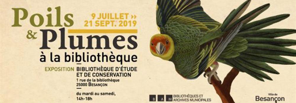 Poils et plumes – Exposition à découvrir à Besançon jusqu'au 21 septembre 2019