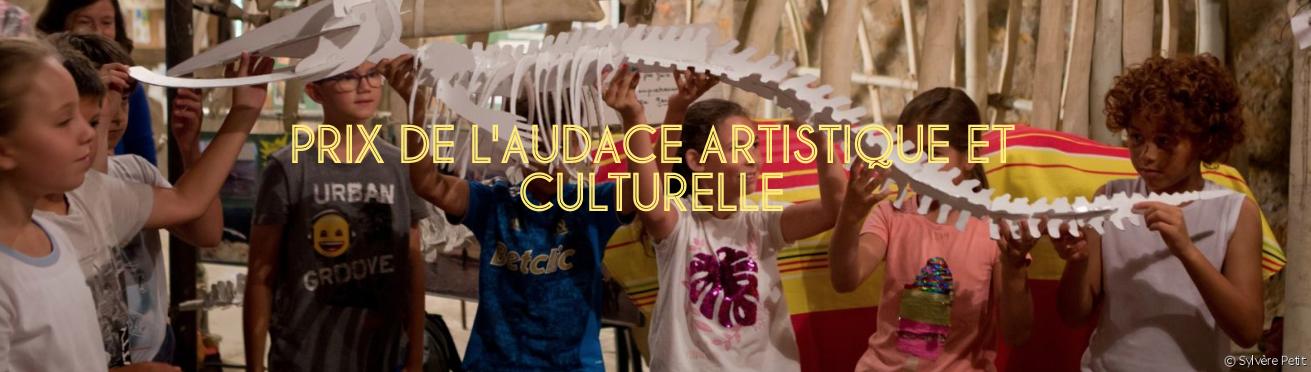 Prix de l'Audace artistique et culturelle